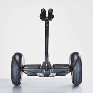 2 Wheel Self Balance Hoverboard Ninebot with Handgrip pictures & photos