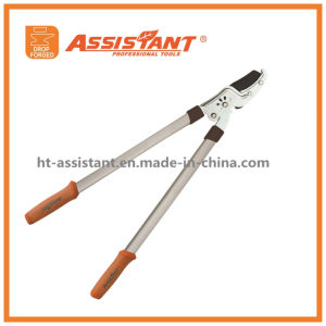 Drop Forged Lawn Garden Orchard Horticultural Pruning Loppers pictures & photos