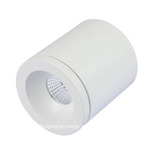 9W Nice Surface Mounted CREE COB LED Downlight pictures & photos