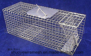 Foldaway/Chipmunk/Groundhog Trap Cage pictures & photos