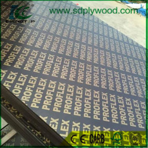 Film Faced Plywood/Construction Plywood for Construction pictures & photos