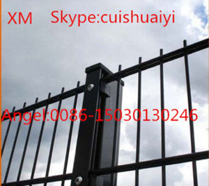 Professional Custom Easily Assembly Double Wire Mesh Fence/Double Bar Fence pictures & photos