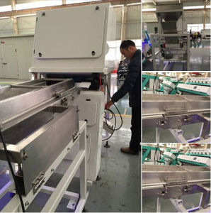Top Selling High Quality CCD Full Color Plastic Colour Sorter, Pet Plastic Colour Sorting Machine pictures & photos