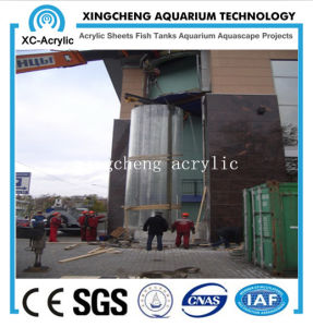 Customized Acrylic Material Acrylic Aquarium 80mmthick pictures & photos