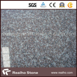 Cheap and Popular Bainbrook Brown G664 Granite Slab for Kitchen Countertop pictures & photos