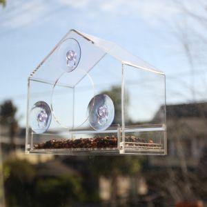 Clear Acrylic Wild Bird Feeder Window Feeder Bird House pictures & photos