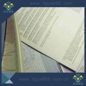 UV Fiber Watermark Hot Stamping Paper Security Certificate pictures & photos
