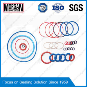 Profeesional Supplier for GB3452 Standard Metric Rubber O Rings pictures & photos
