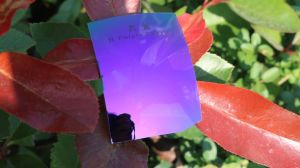Colorful Eyeglasses Polarized Tac Lens (R Purple Classic) pictures & photos