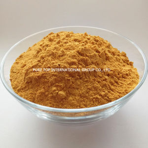 Animal Fodder Corn Gluten Meal (protein 60%min) for Poultry Feed with Good Price and High Quality pictures & photos