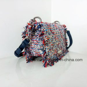 Fashion Style Mini Lady PU Woven Chain Leather Handbags (NMDK-032904) pictures & photos