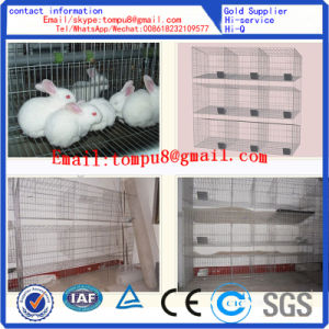 Rabbit Breeding Cages and Animal Cage Hot Sale pictures & photos