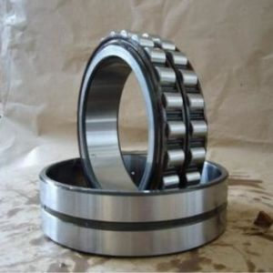 SL014922 Cylindrical Roller Bearing SKF Rolling Bearings pictures & photos
