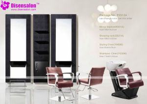 Popular High Quality Salon Furniture Shampoo Barber Salon Chair (P2012A)