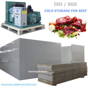 Fan Cooling Cold Storage for Beef with Semi-Hermetic Compressor pictures & photos