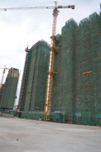 8t Qtz100 (TC6015) Building Tower Crane pictures & photos