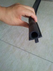 Rubber D EPDM Strips Rubber Door Strip pictures & photos