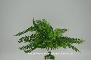 Artificial/Plastic Grass Bush (XF56) pictures & photos