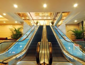 Deluxe V3f Commercial Escalator with CE (Graces)