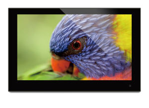 13.3 Inch IPS Digital Photo Frame pictures & photos