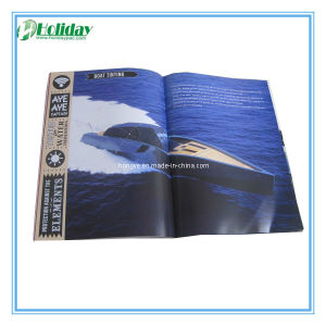 Customized Brochure Printing, Unique Brochure (HLDC1128)