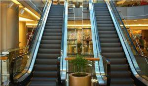 Energy Conservation Vvvf Passenger Escalator pictures & photos