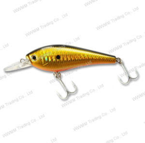 Fishing Tackle Plastic Lure Crank Minnow Fishing Lure (HYT007) pictures & photos