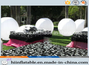 2015 Hot Selling Decorative LED Lighting Inflatable Ball Tube 0019 for Party Event, Wedding, Outdoor Christmas Decoration