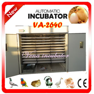 Automatic Egg Incubation Equipment for Poultry Eggs Va-2640 pictures & photos