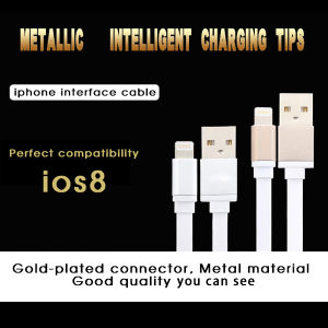 2015 New Design Charger USB Data Cable for iPhone 5/5s pictures & photos