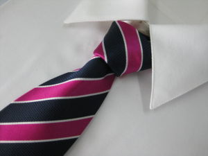 100% Woven Silk Neckties pictures & photos