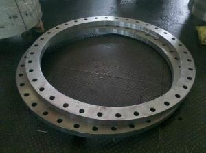 Flanges Ring Rolled / Forged and Hot Rolled Flanges pictures & photos