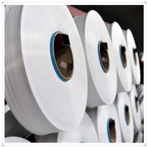 Factory Direct Wholesale 100% Nylon Filament HOY Yarn of PA6