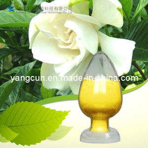 Gardenia Yellow (CAS: 1934-20-9) pictures & photos