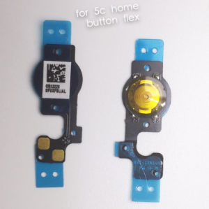 Cellphone Home Button Flex Cable for iPhone 5c pictures & photos