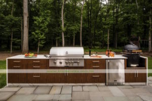 304 Stainless Steel Outdoor Kitchen with BBQ (WH-D376)