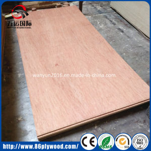 5mm 18mm Commercial Bintangor Plywood by One/Two Times Hot Press pictures & photos