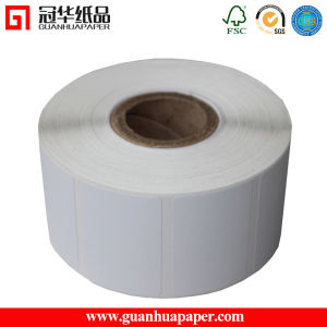 MSDS Hot-Sale Thermal Transfer Sticker/Label pictures & photos