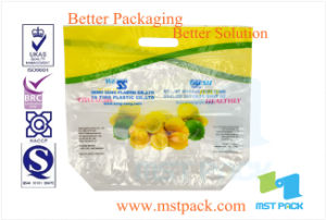 BOPP Fruit Packaging Pouch with Vent Holes and Zipper pictures & photos