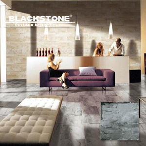 600X600 Cement Series Rusitc Porcelain Tile with Good Quality (BGDMA66251) pictures & photos