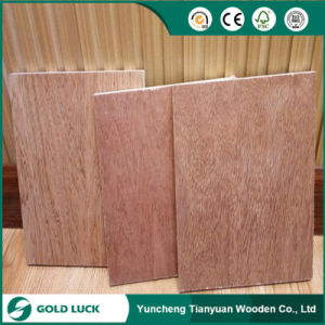 Decorative Commercial Plywood, 3mm Bintangor Okoume Plywood pictures & photos