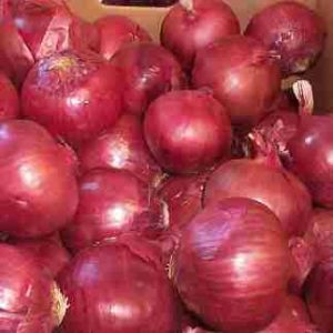 Healthy Export Refined Fresh Onion (red/yellow)