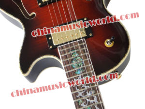 Afanti Music Lp Style Double F Holes Electric Guitar (CST-158) pictures & photos