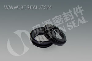 Apv Pump Seal Btowp pictures & photos