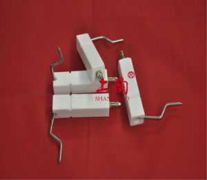 Porcelain Ignition Electrodes pictures & photos