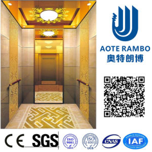 German Professional Passenger Elevator with Vvvf Drive (RLS-235) pictures & photos