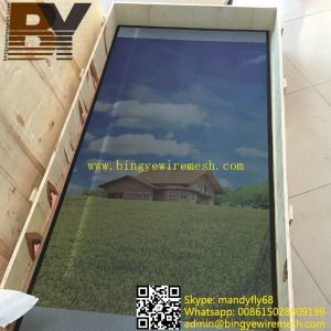 Stainless Steel Security Window Screen pictures & photos