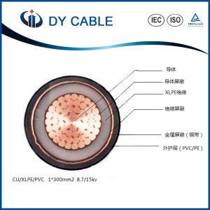 High Quality XLPE Insulated Power Cable Manufacturer (CU/XLPE/PVC) pictures & photos