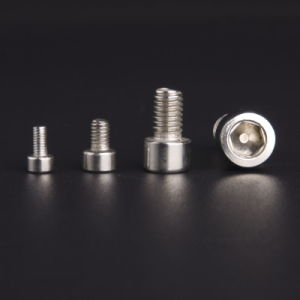 Stainless Steel Hexagon Socket Cap Screw