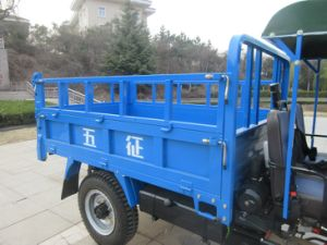 Waw 3-Wheel Vehicle with Rops & Sunshade (WE3B2523101) pictures & photos